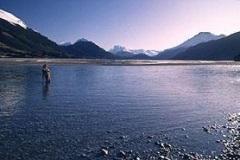 salmon-fishing-dart-river